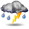 :  Mostly cloudy and cooler. Precipitation likely. Windy with possible wind shift to the W, NW, or N.